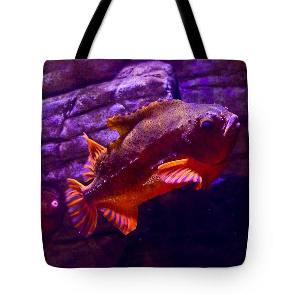 Close Up Of A Lumpfish Tote Bag by Eti Reid