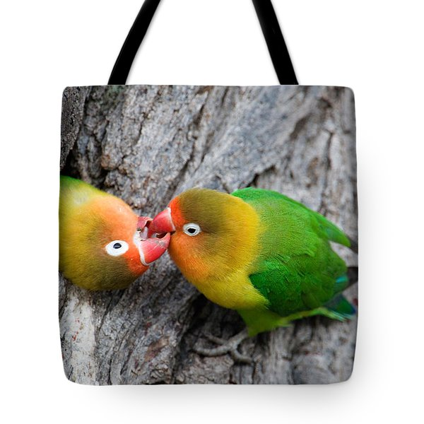Close-up Of A Pair Of Lovebirds, Ndutu Tote Bag