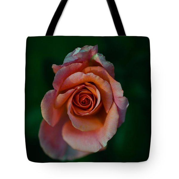 Close-up Of A Pink Rose, Beverly Hills Tote Bag