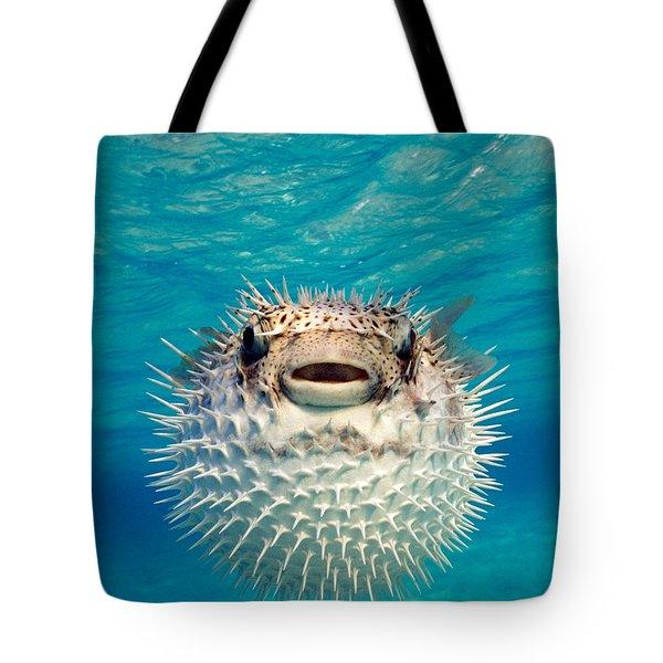 Close-up Of A Puffer Fish, Bahamas Tote Bag