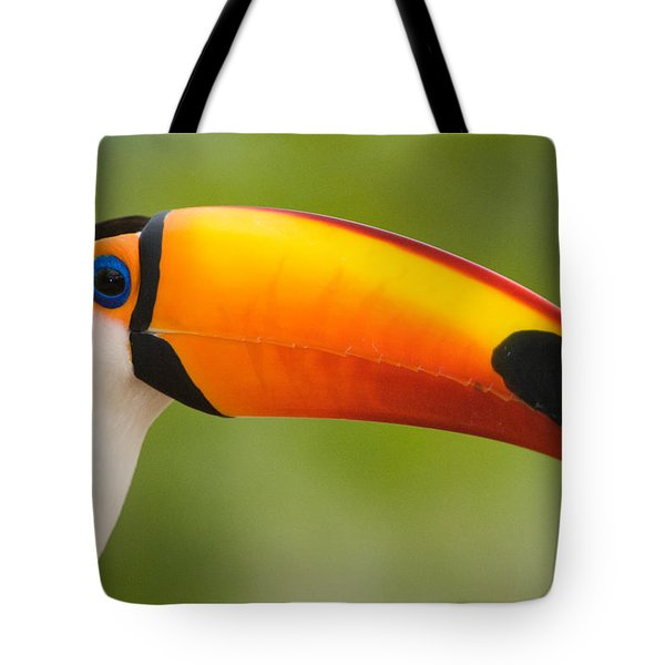 Close-up Of A Toco Toucan Ramphastos Tote Bag