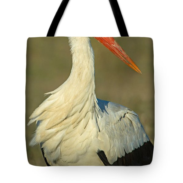Close-up Of An European White Stork Tote Bag