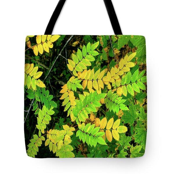 Close-up Of Autumn Leaves, Keweenaw Tote Bag