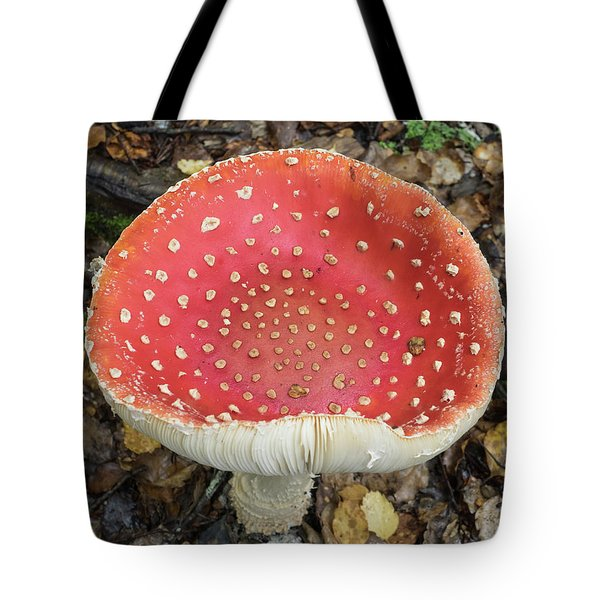 Close-up Of Red Mushroom Growing Tote Bag