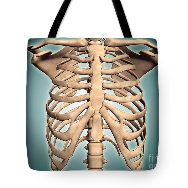 Close-up View Of Human Rib Cage Tote Bag by Stocktrek Images