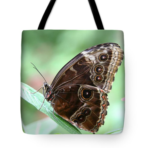 Closed Blue Morpho Tote Bag by Denyse Duhaime