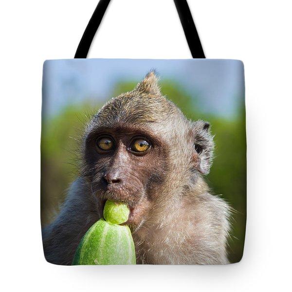 Closeup Monkey Eating Cucumber Tote Bag