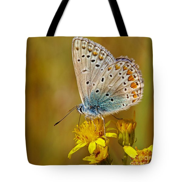 Closeup Of A Common Blue Butterfly Tote Bag
