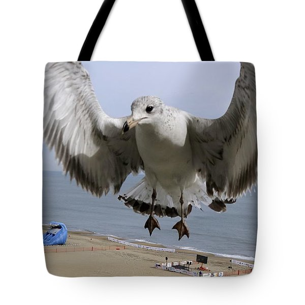 Closeup Of Hovering Seagull Tote Bag