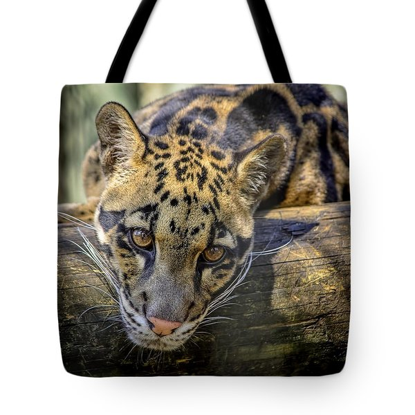 Tote Bag featuring the photograph Clouded Leopard by Steven Sparks