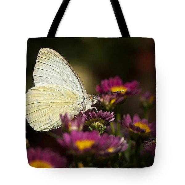 Cloudless Sulphur Butterfly  Tote Bag by Saija  Lehtonen