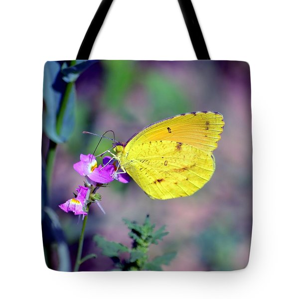 Cloudless Sulphur Tote Bag by Deena Stoddard