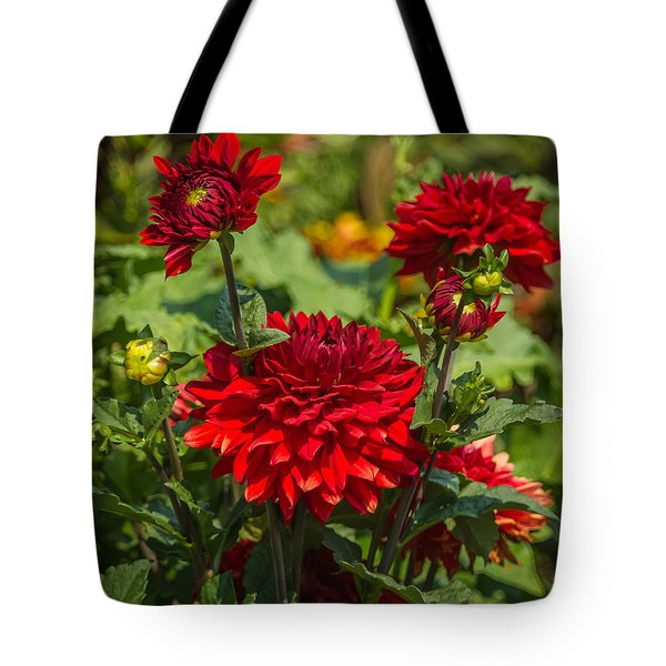 Cluster Of Dahlias Tote Bag by Jane Luxton