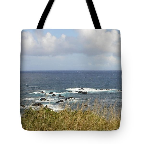 Tote Bag featuring the photograph Coastal Grass by Fred Wilson