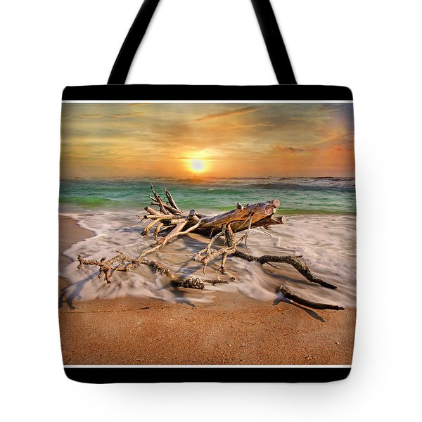 Coastal Morning  Tote Bag by Betsy Knapp