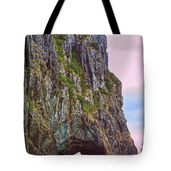 Coastal Rock Open Arch Tote Bag