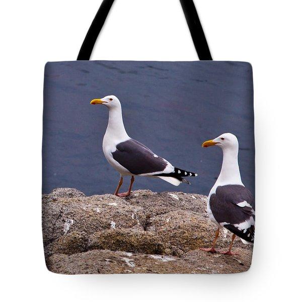 Coastal Seagulls Tote Bag by Melinda Ledsome