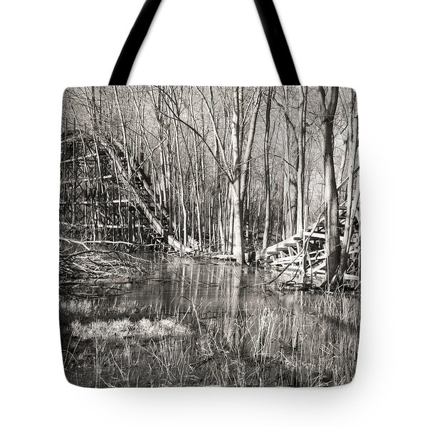 Coaster Reflections Tote Bag by William Beuther