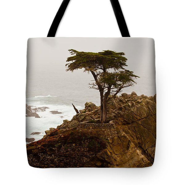 Coastline Cypress Tote Bag