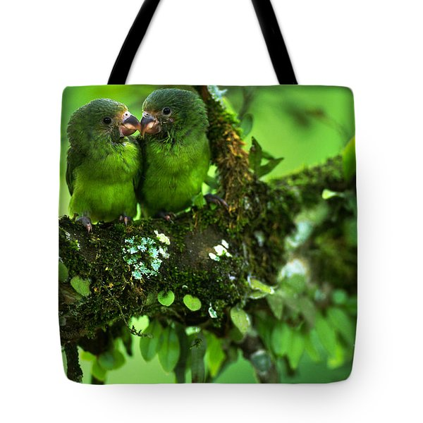 Cobalt-winged Parakeets Tote Bag by Art Wolfe