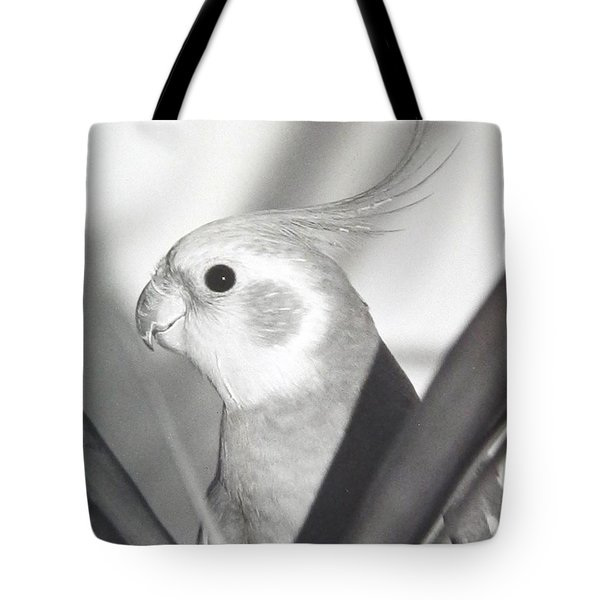 Tote Bag featuring the photograph Cockatiel In Palm by Belinda Lee