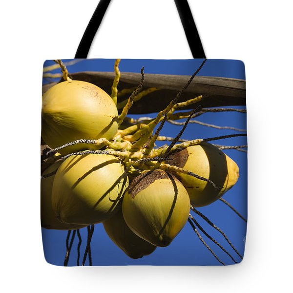 Tote Bag featuring the photograph Coconut 1 by Teresa Zieba