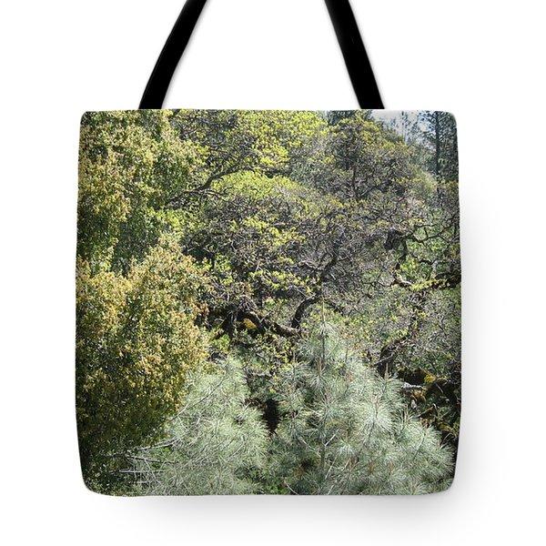 Coe Park Tote Bag