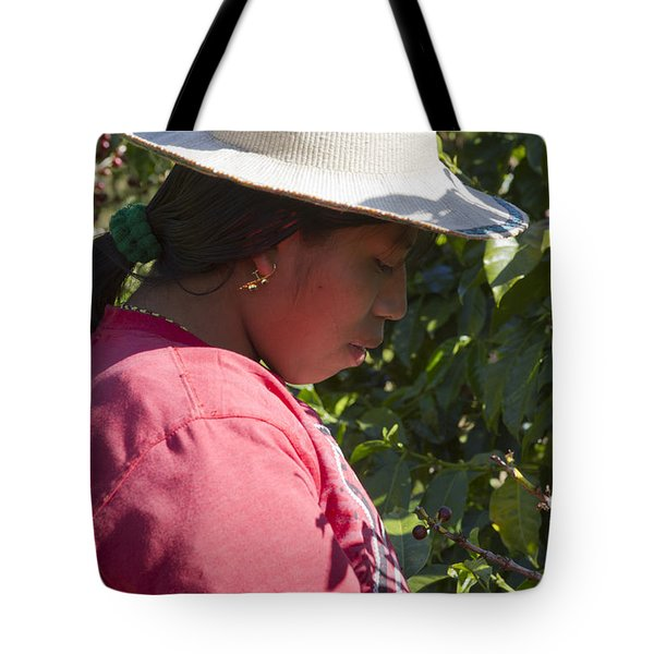 Coffee Harvest Time Tote Bag by Heiko Koehrer-Wagner