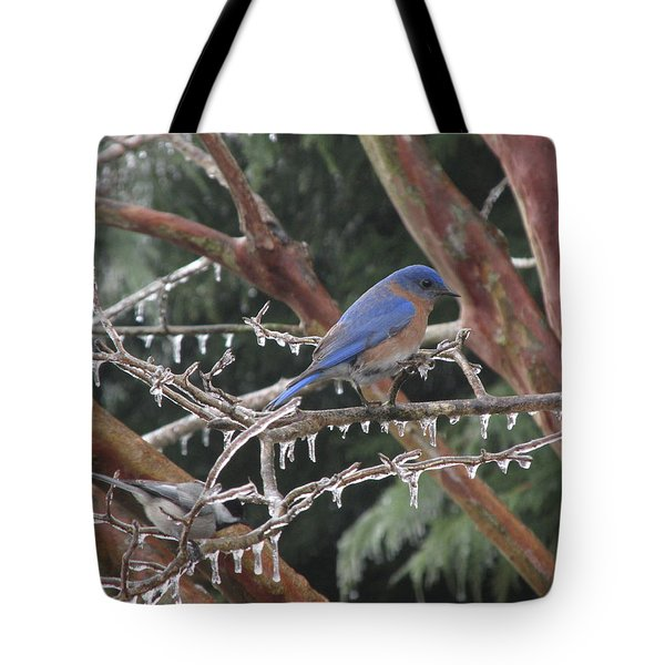Cold And Blue Tote Bag