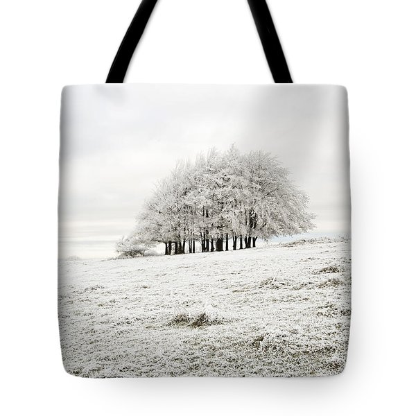 Cold Tote Bag by Anne Gilbert