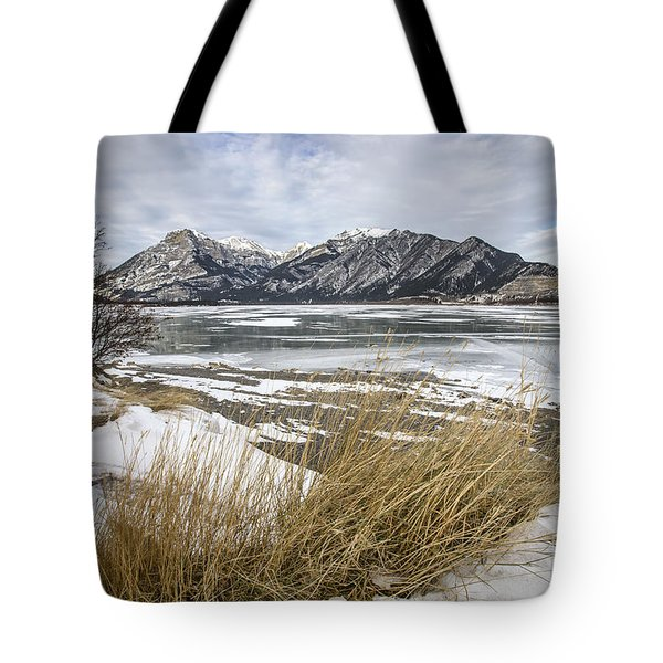 Cold Landscapes Tote Bag