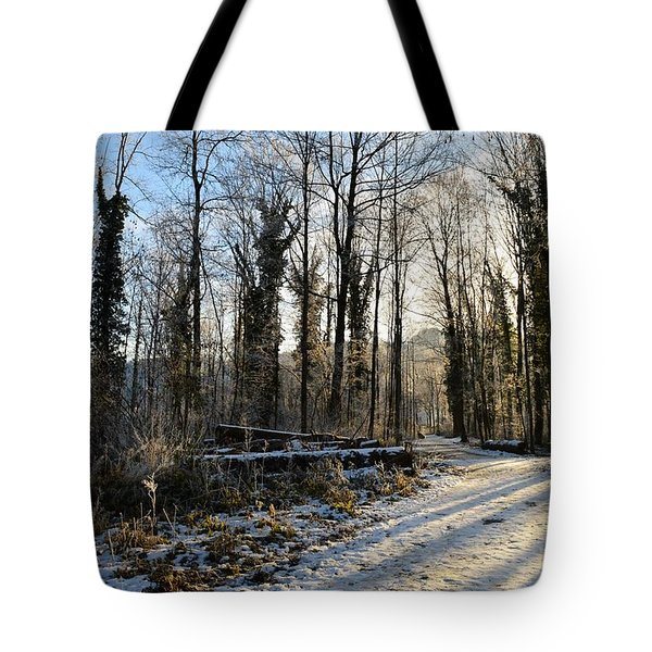 Tote Bag featuring the photograph Cold Morning by Felicia Tica