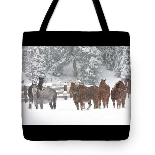 Cold Ponnies Tote Bag by Diane Bohna