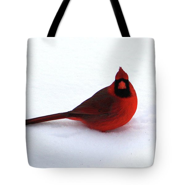 Tote Bag featuring the photograph Cold Seat by Alyce Taylor