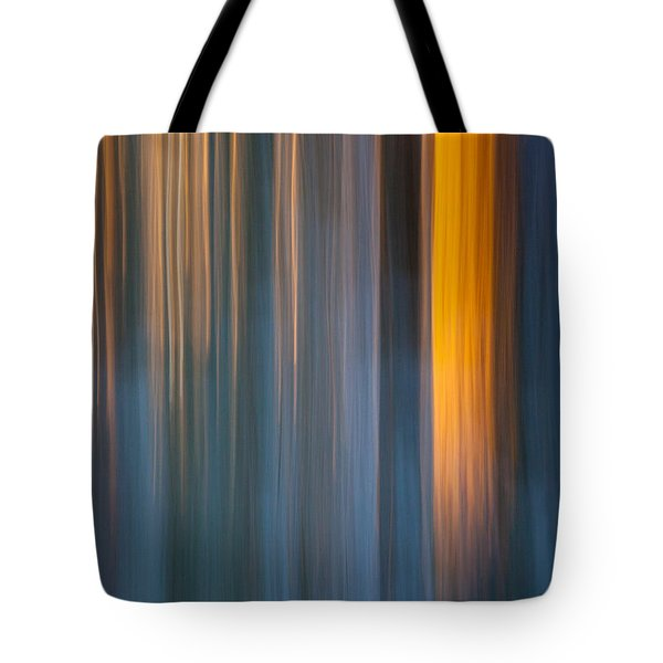 Tote Bag featuring the photograph Cold Shadows by Davorin Mance