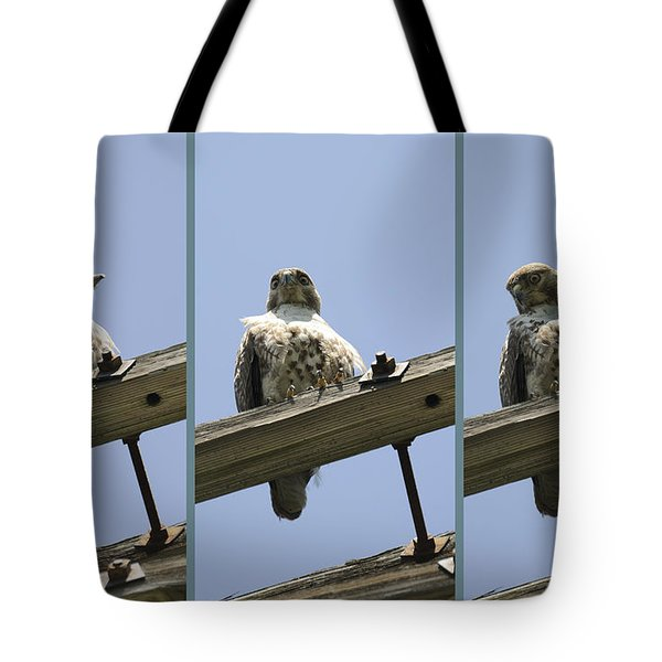 Cold Stare Tote Bag by Luke Moore
