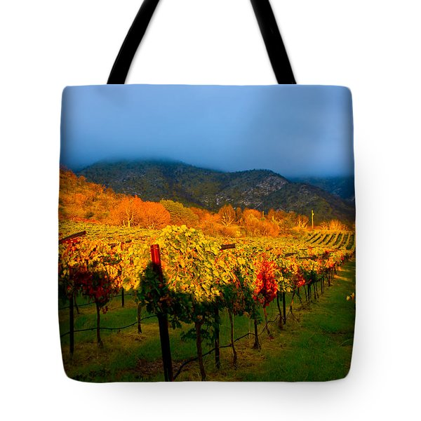 Colibri Morning Tote Bag