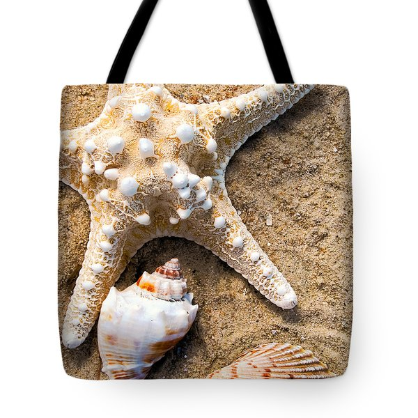 Collecting Shells Tote Bag by Colleen Kammerer