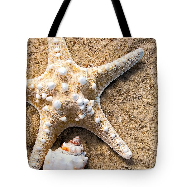 Collecting Shells Tote Bag