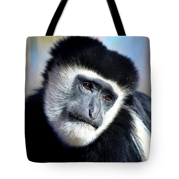 Tote Bag featuring the photograph Colobus Contemplation by Deena Stoddard