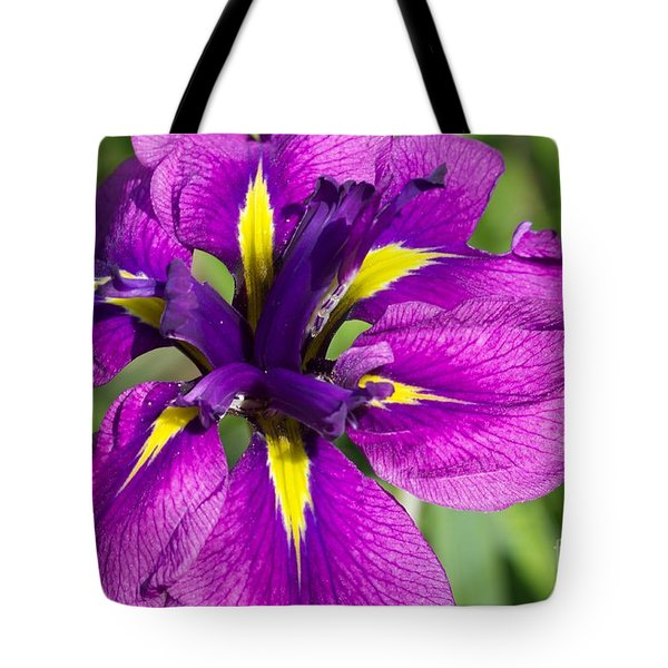 Color Explosion All Profits Go To Hospice Of The Calumet Area Tote Bag