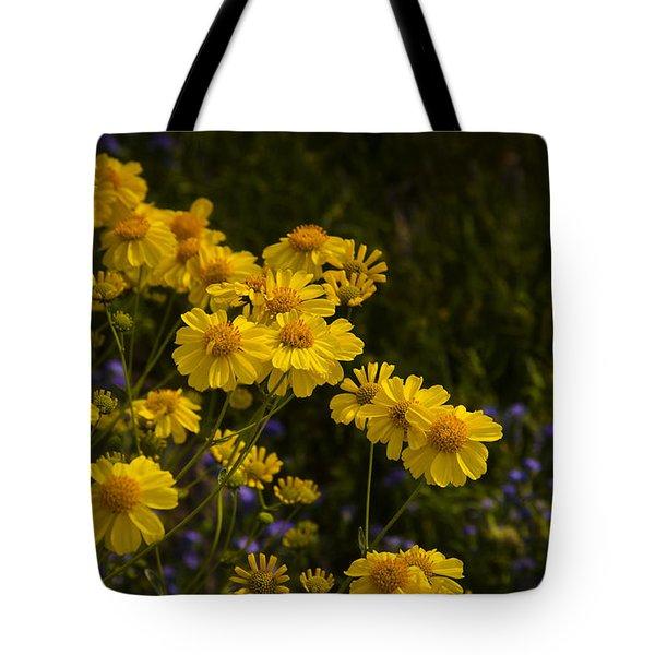Color Me Yellow  Tote Bag by Saija  Lehtonen