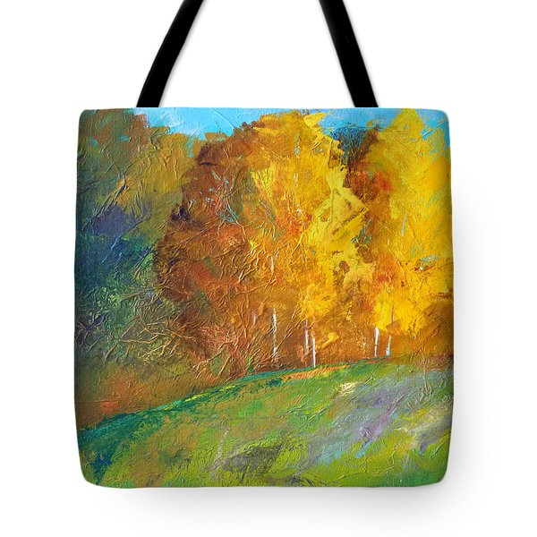 Color Tote Bag by Nancy Merkle