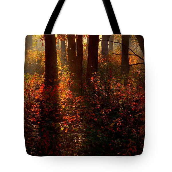 Color On The Forest Floor Tote Bag