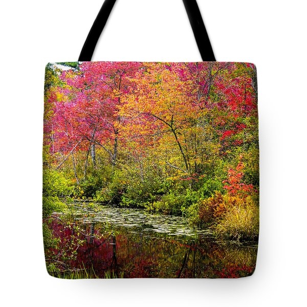 Tote Bag featuring the photograph Color On The Water by Mike Ste Marie