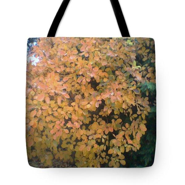 Color Surprise Tote Bag