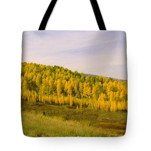 Colorado Aspens Tote Bag by Brian Harig