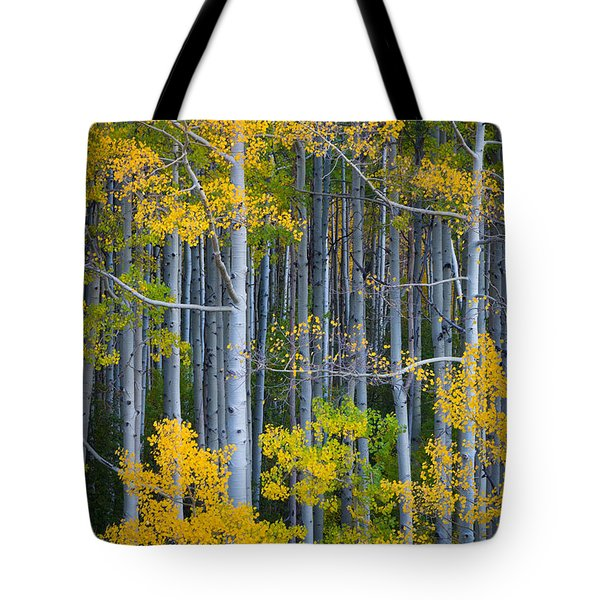Colorado Fall Color Tote Bag by Inge Johnsson