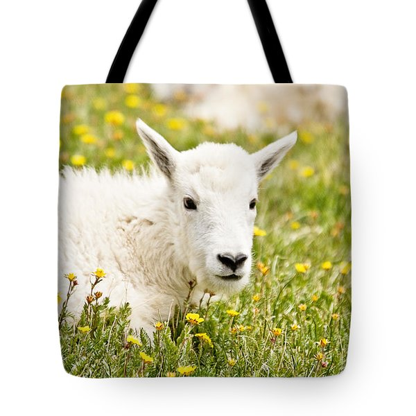 Colorado Kid Tote Bag by Scott Pellegrin