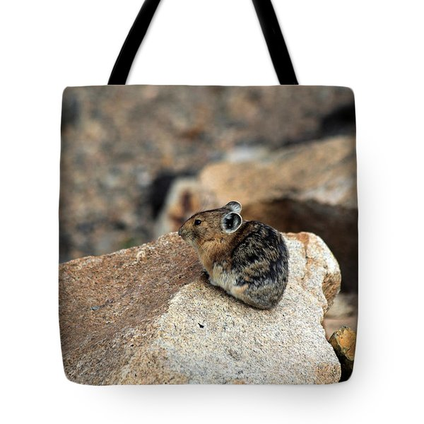 Colorado Pika Tote Bag